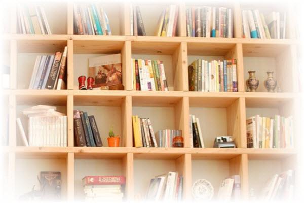 een boekenkast maken die helemaal naar je wens is